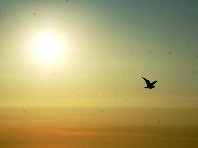 picsart_08-01-11.14.17.jpg