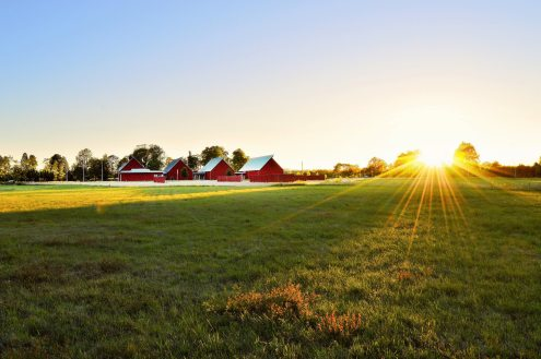 agriculture-barn-countryside-1198507.jpg